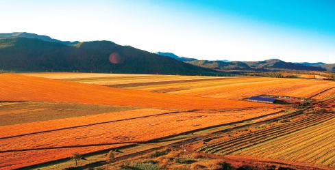 内蒙古自然资源资产负债表探索研究